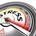 Stress level conceptual meter indicating maximum — Stock Photo #25576999