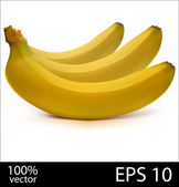 Three bananas in batch photo realistic vector illustration — Stock Vector