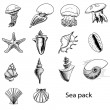 Collection of sea animals. Hand drawing sketch vector illustration — Stock Vector