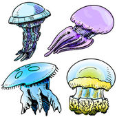 Jelly fish collection. Hand drawing sketch vector illustration — Stock Vector