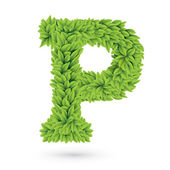 Letter P of green leaves with shadow — Stock Vector
