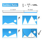 Golden Ratio,Golden Proportion — Stock Vector