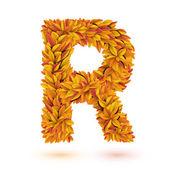 Otoño otoño hojas naranja brillante carta — Vector de stock
