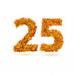 25 number of autumn fall bright orange leaves — Imagen vectorial