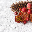 Christmas composition. — Stock Photo #12850104