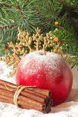 クリスマスの組成. — ストック写真