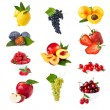 Fruits. — Stock Photo #13963463