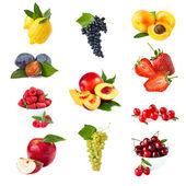 Frutta. — Foto Stock