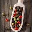 Peppercorn mix. — Stockfoto