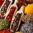 Spices and herbs. — Stock Photo #21377137