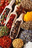 Koření a byliny. — Stock fotografie