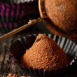 Chocolate truffle. — Stock Photo #22005857