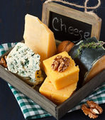 Cheese composition. — Stock Photo