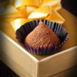 Chocolate truffle. — Stock Photo #22448761