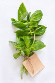 Fresh green basil leaves on a white cloth with a label. — Stock Photo