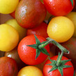 Tomatoes. — Stock Photo #23397346