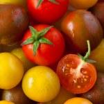 Tomatoes. — Stock Photo