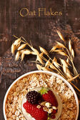 Oatmeal. — Stock Photo