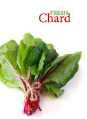 Fresh chard. — Stock Photo