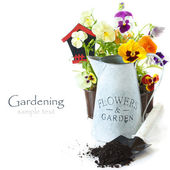 Uprawianie ogródu. — Zdjęcie stockowe