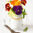 Beautiful pansy flowers. — Stock Photo