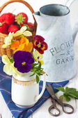 Gardening. — Stock fotografie