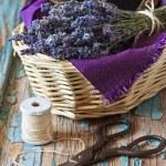 Lavender. — Stock Photo #34209167