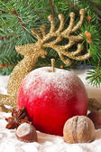 Christmas composition. — Stockfoto