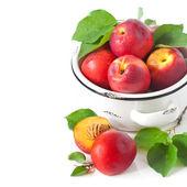 Nectarines. — Stock Photo