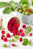 Berries. — Stock Photo