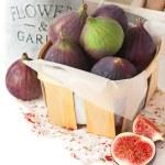 Figs. — Stock Photo