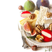 Cheese plate. — Stock Photo
