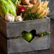 Vegetables. — Stockfoto