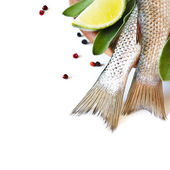 Fresh fish. — Stock Photo