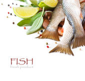 Fish. — Stock Photo