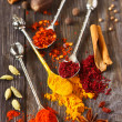 Spices. — Stock Photo #41392337