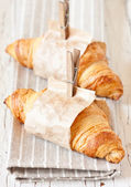 Fresh croissants. — Stock Photo