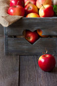 Red apples. — Stock Photo