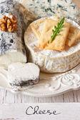 Cheese. — Stock Photo