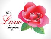 Abstract love rose wallpaper — Stock Vector