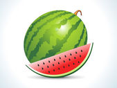 Water melon fruit with slice — Stock Vector