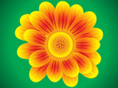 Yellow blooming flower on green background — Stock Vector