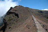 Ön Madeira — Stockfoto