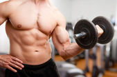 Standing Bicep Dumbbell Curl — Stock Photo