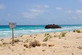 Ship Wreck in Boa Vista Island, Cape Verde — Stock Photo