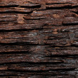 Texture surface natural wood background — Stock Photo
