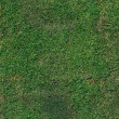 Stock Photo: Green grass after trim background