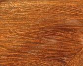 Holz oberfläche natürlichen holz-hintergrund — Stockfoto