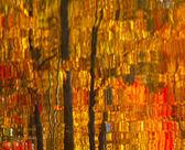 Hojas de otoño abstracto reflexión — Foto de Stock