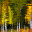 Abstract Trees Water Reflection — Stock Photo